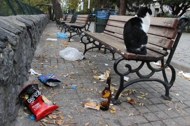 Üniversite Kampüsünde banklların hemen yanında, oturanlar tarafından atılmış çöpler. Herbankın yanında bir adet çöp kutusu bulunmakta